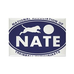 NATE logo Magnets