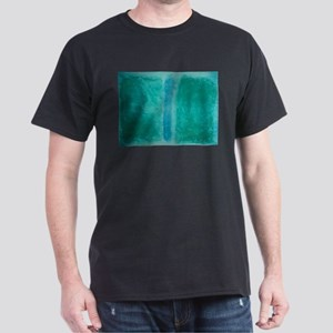 ROTHKO IN TEAL Dark T-Shirt