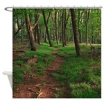 Walk In Woods Path Trees Shower Curtain