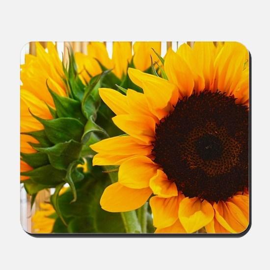 Sunflower III Mousepad
