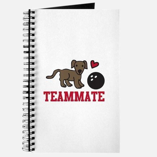 Teammate Journal