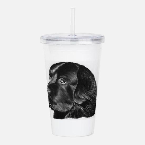 Newfoundland Dog Acrylic Double-wall Tumbler