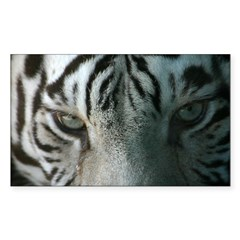tiger eyes Rectangle Decal