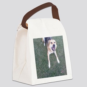 Lets play! Canvas Lunch Bag