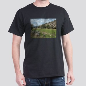 Colorado 4 Dark T-Shirt