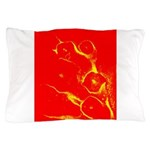 Scouts Pillow Case