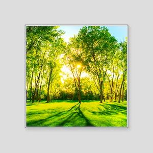 Green Forest Sticker