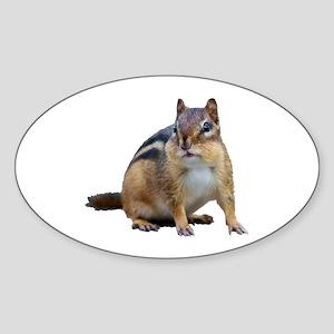 Chipmunk. Sticker