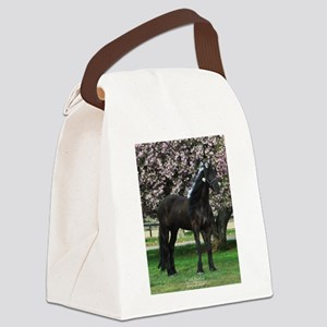 Friesian Sparkles Canvas Lunch Bag