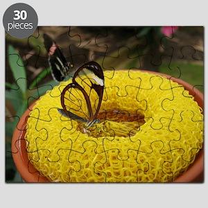 1697365 Puzzle