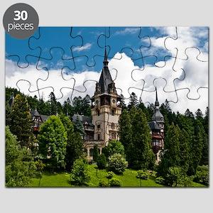21873299 Puzzle