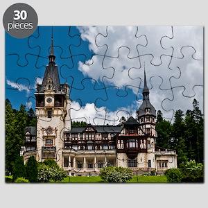 21873302 Puzzle