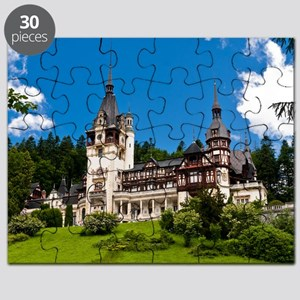 21873305 Puzzle