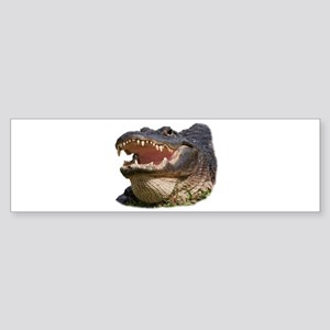 alligator with teeth showing Bumper Sticker