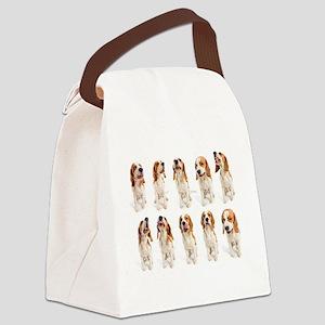 Beagle Grimaces Canvas Lunch Bag