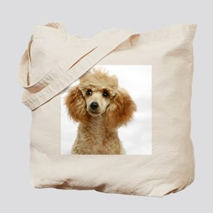 Apricot Poodle Puppy Tote Bag