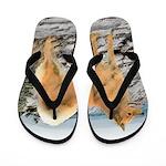 Finnish Spitz Flip Flops