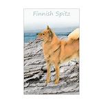 Finnish Spitz Mini Poster Print