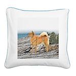Finnish Spitz Square Canvas Pillow