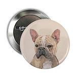 French Bulldog (Sable) 2.25