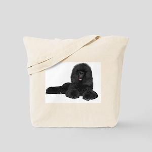 Black Poodle Lying Tote Bag