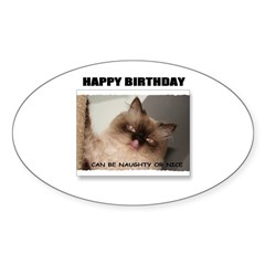 HAPPY BIRTHDAY (NAUGHTY CAT LOOK) Oval Decal