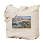 Rocks and Tide Pool Tote Bag