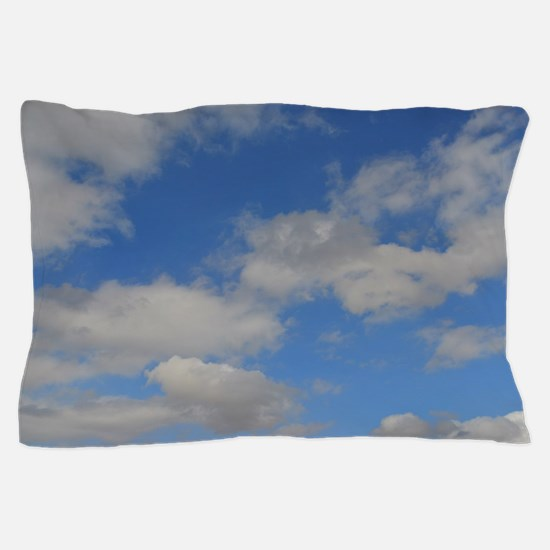 Blue and White Pillow Case