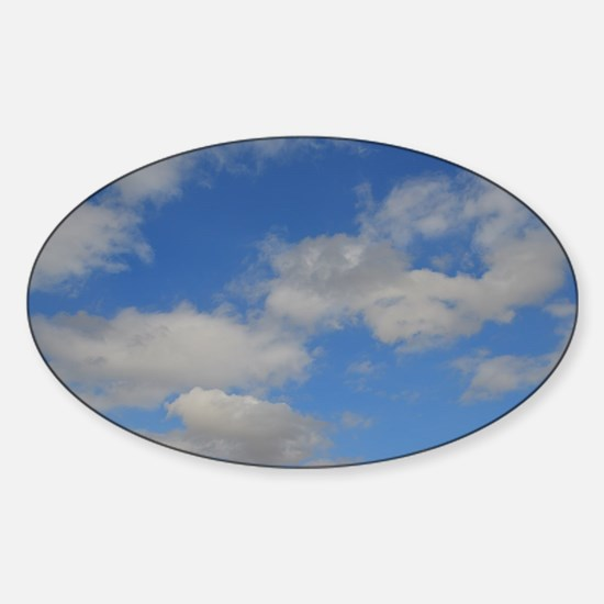 Blue and White Sticker (Oval)