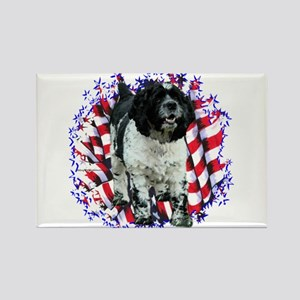 Cocker Spaniel Patriotic Rectangle Magnet