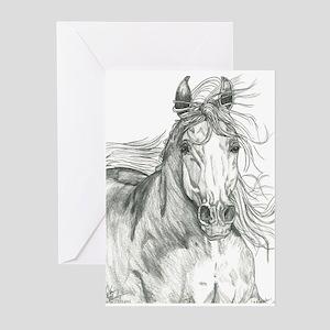 Freedom Phantom Greeting Cards (Pk of 10)