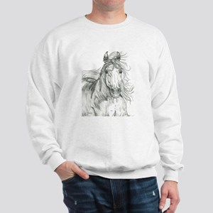 Freedom Phantom Sweatshirt