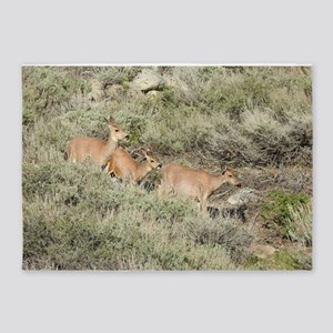 A Mulr Deer Adventure 5'x7'Area Rug