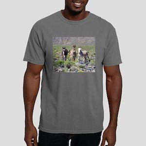 Treasures of Marietta T-Shirt
