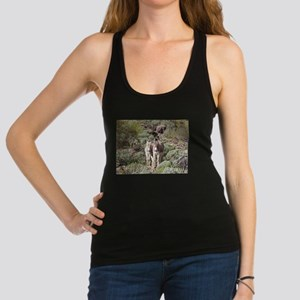 Mommy and Baby Burro Tank Top