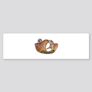 Prairie Dog Kiss Bumper Sticker