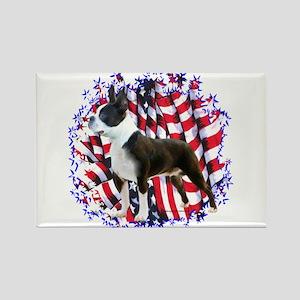 Boston Patriotic Rectangle Magnet