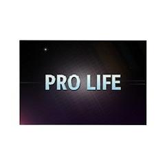 Pro Life Magnets