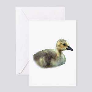 baby goose Greeting Cards