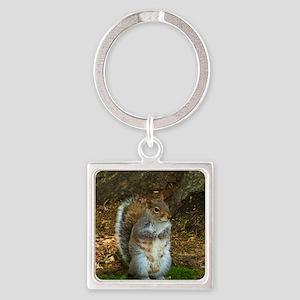 Grey Squirrel Keychains