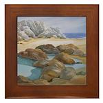 Rocks and Tide Pool Framed Tile