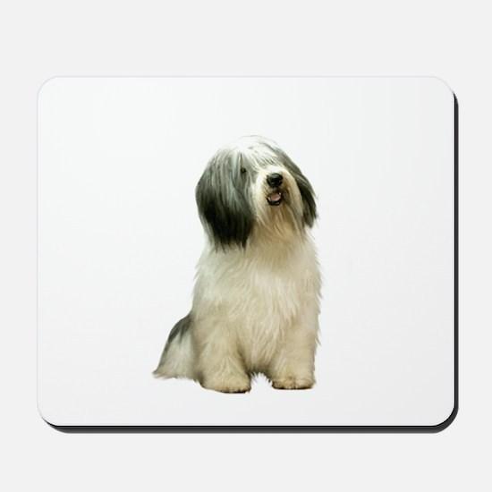 Polish Lowland Sheepdog 1 Mousepad