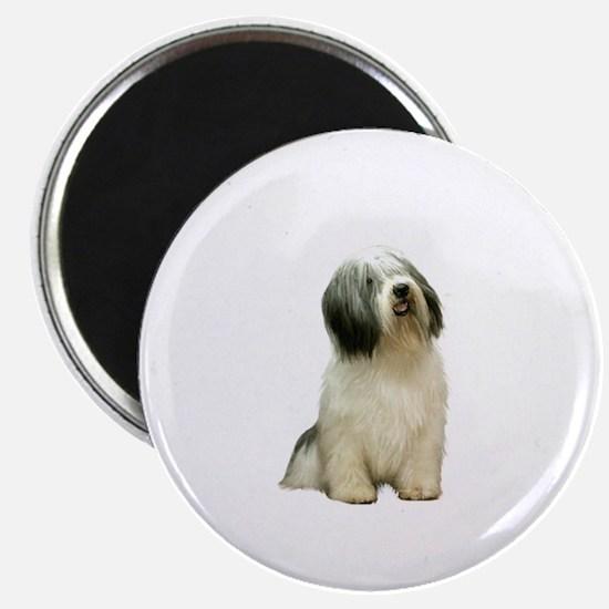 Polish Lowland Sheepdog 1 Magnet