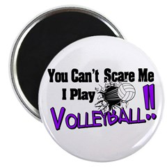 Volleyball - No Fear Magnet