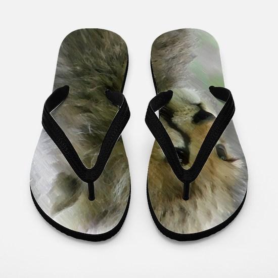 Unique Cheetah Flip Flops