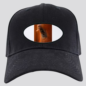 Eye of the Horse Black Cap