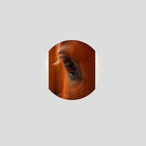 Eye of the Horse Mini Button