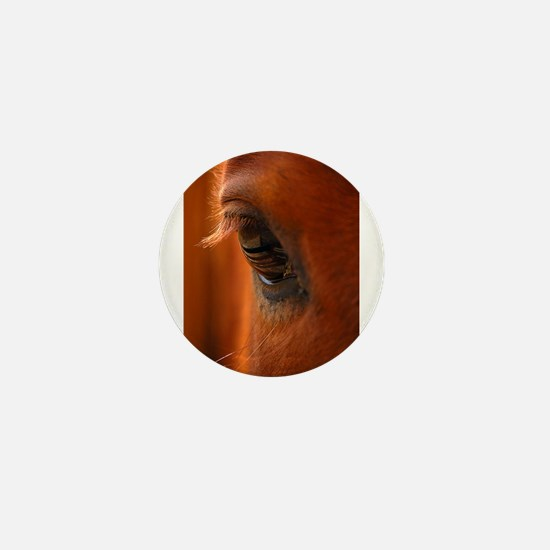 Eye of the Horse Mini Button