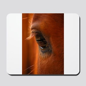 Eye of the Horse Mousepad