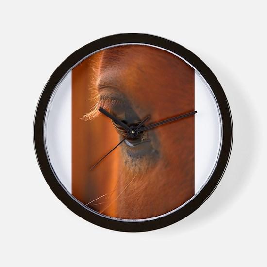 Eye of the Horse Wall Clock